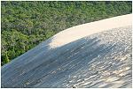 La dune 2