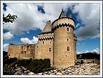 Chateau de Suscinio 5