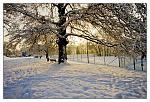 TCA sous la neige 3